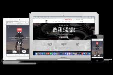 TVDAS网站建设